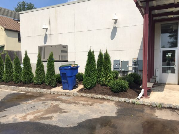Installation of a 24kw kohler commercial generator - Lambertville, NJ - We did the landscaping too!